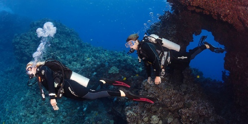 Wailea Reef Dives