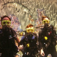 Makena Introductory Scuba Diving